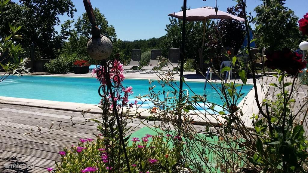 Groot zwembad met ruim zonneterras