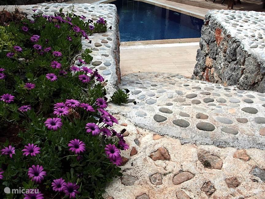 de steentjes hebben we van het strand verzamelt net gelijk de griekse mensen 200 jaar geleden gedaan hebben .
