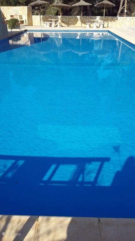 zwembad 20Meter x 10Meter