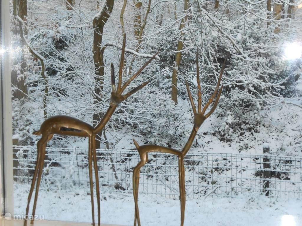 Zicht op winters landschap vanuit de tuinkamer