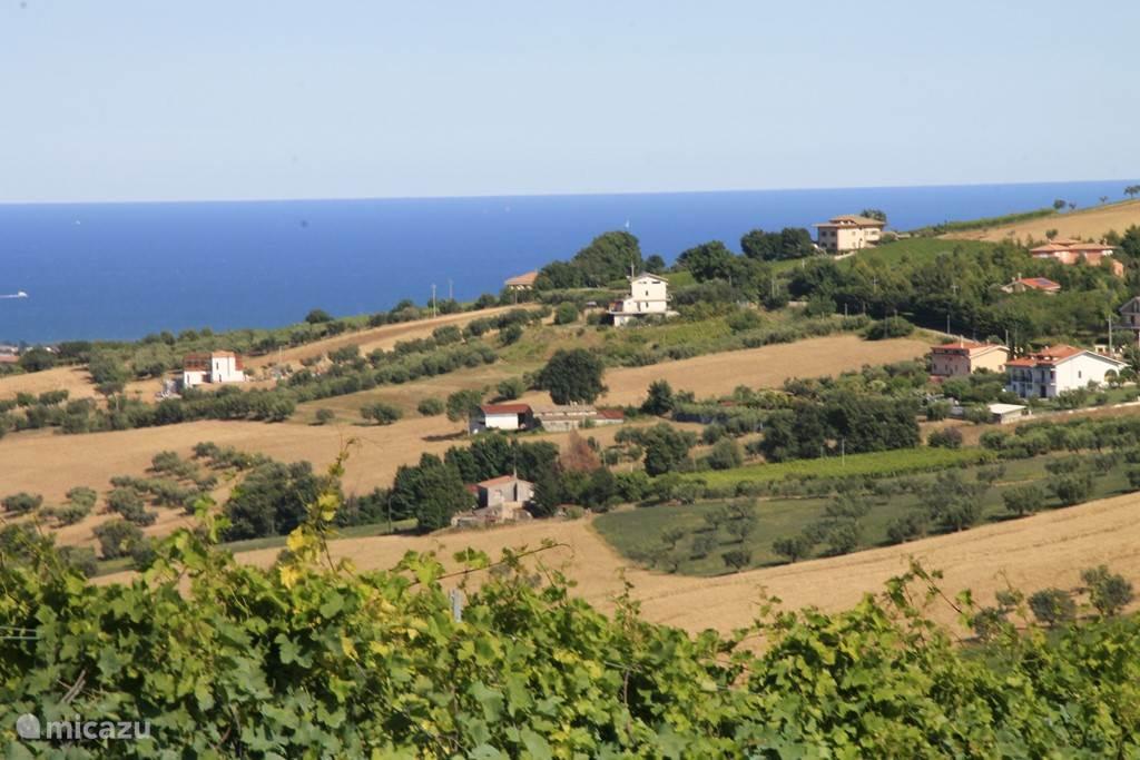 Uitzicht vanaf de heuvels naar de Adriatische zee