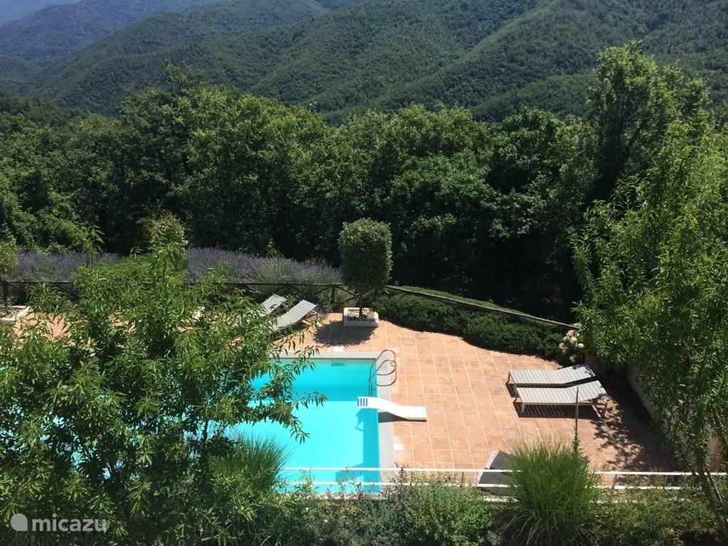 Het zwembad van 10 x 5 meter ligt op een terras op een lager gelegen niveau (te bereiken met een trap die voorzien is van een hekje voor de veiligheid van de kinderen). Het zwembad is voorzien van traptreden en een springplank.  Het zwembad ligt op een patio waar je kan uitrusten  o