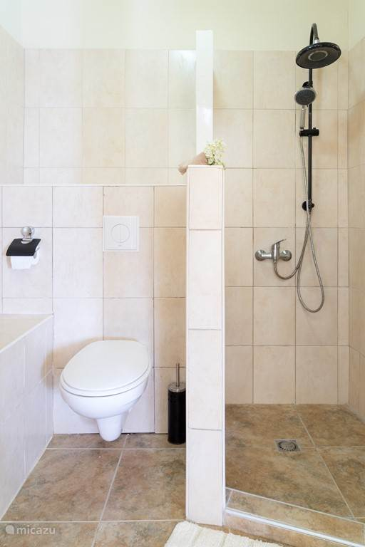 6.5 Grind toilet and shower combination
