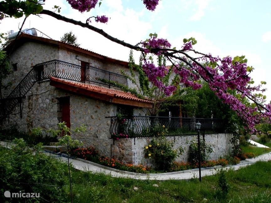 Eflatun grote villa prive zwembad in fethiye lycische for Grote villa