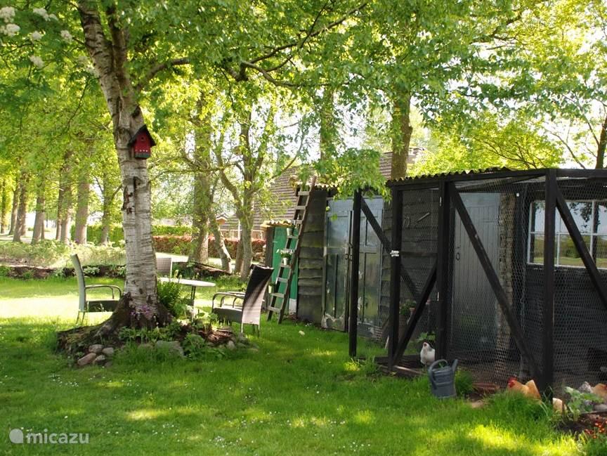 Uitzicht vanaf woonkamer op privetuin, met tuinset, fietsberging en kippenverblijf.