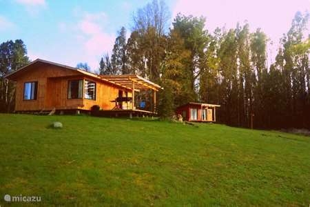 Vacation rental Chile – cabin / lodge New apartment in Panguipulli