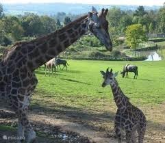 Parc zoo Reynou