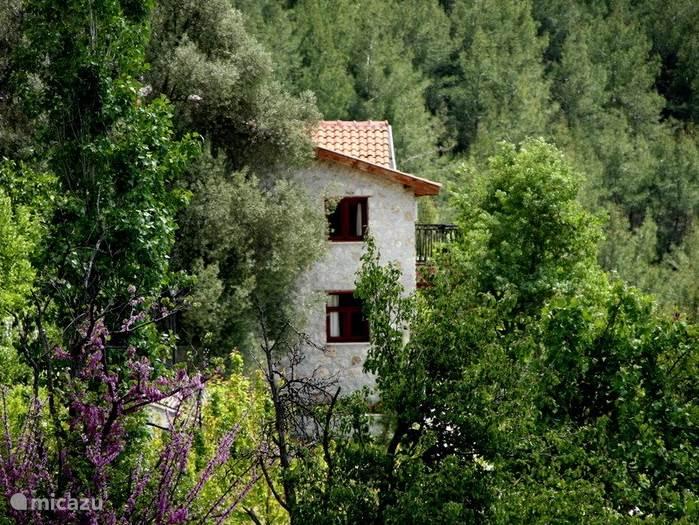 achterkant van oze villa