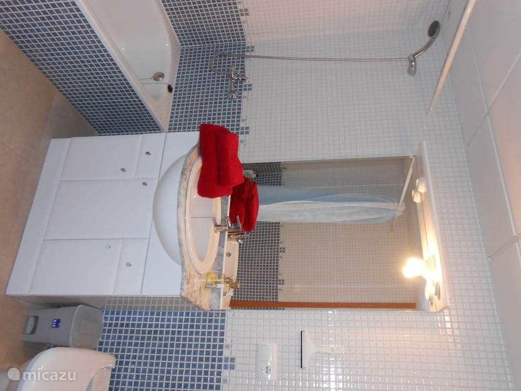 Ruime badkamer met bad/douche , wastafel , toilet en bidet .
