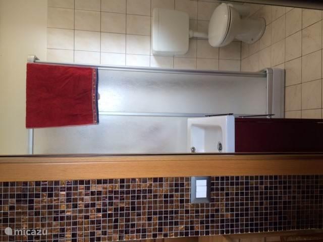 badkamer met douchecabine en wasmachine