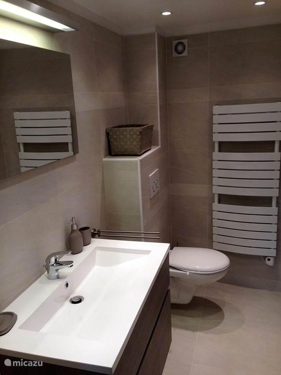 Badkamer met wastafel, toilet en inloopdouche
