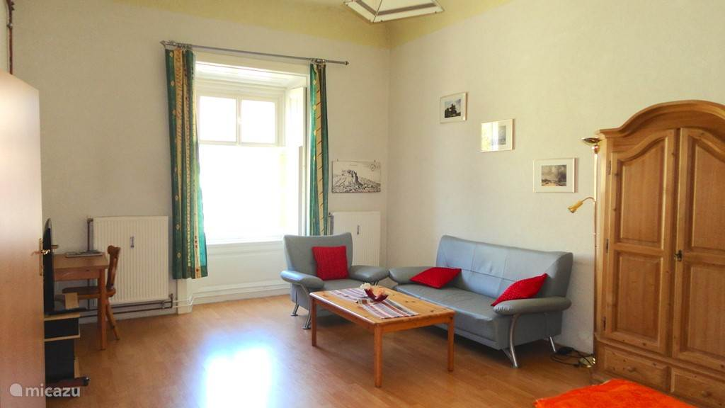 ruime living en slaapkamer