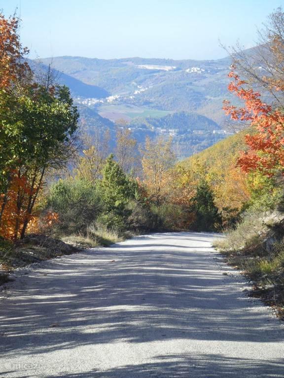 mooie wandelingen over verharde wegen of natuurpaden