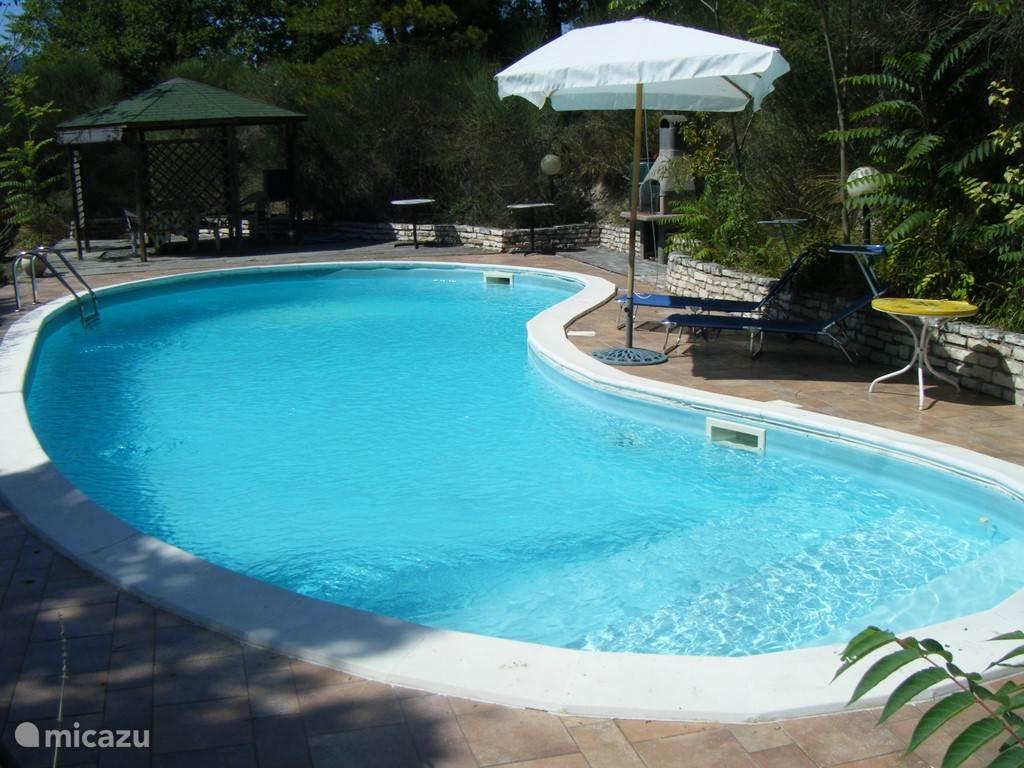 Zwembad met prieel, ligbedden en barbecue