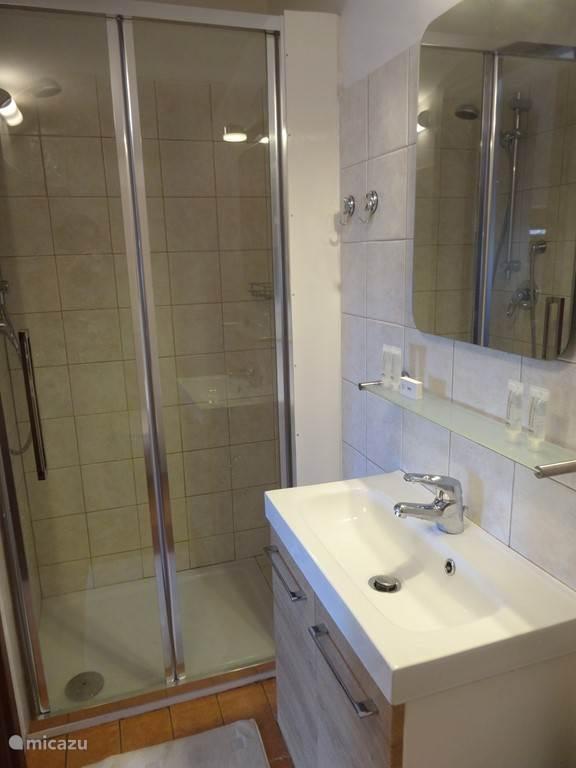 Badkamer met douche, wastafel en toilet. Shampoo, douchegel, toiletpapier aanwezig