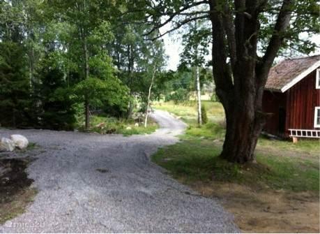Oprijlaan naar het huis gezien vanaf het terras/voordeur. Huisje rechts is een opslagplaats voor barbecue e.d.