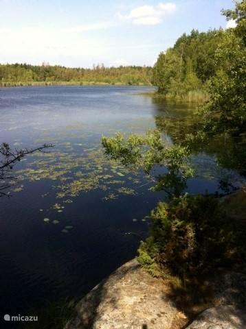 Het meer waar u kunt zwemmen (in de zomer), vissen en roeien in het bootje.