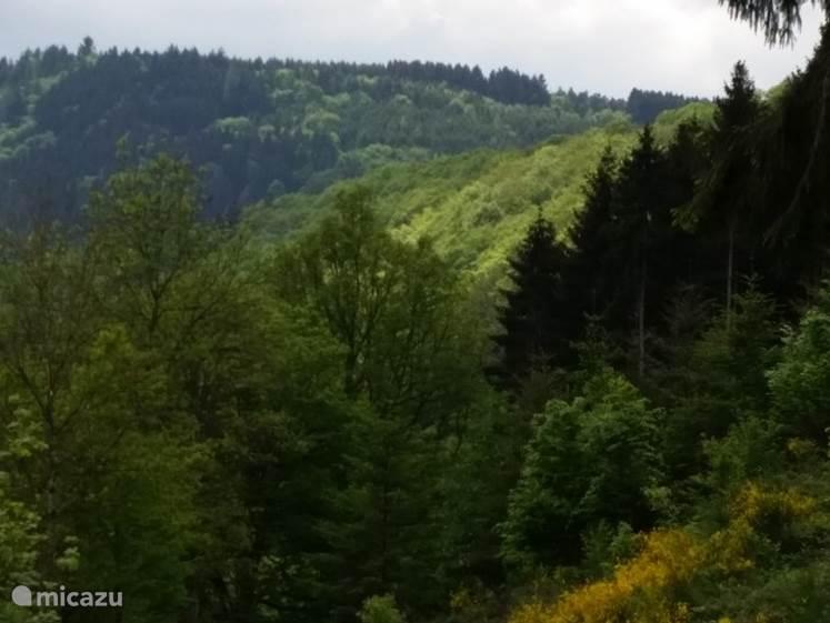 Uitzicht op de Our-Valley