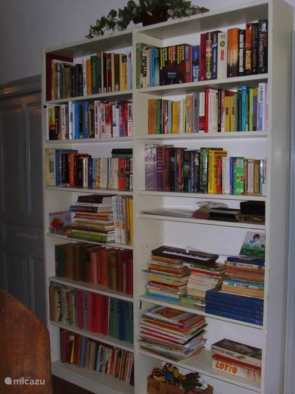 bibliotheek met nederlandse & engelse boeken