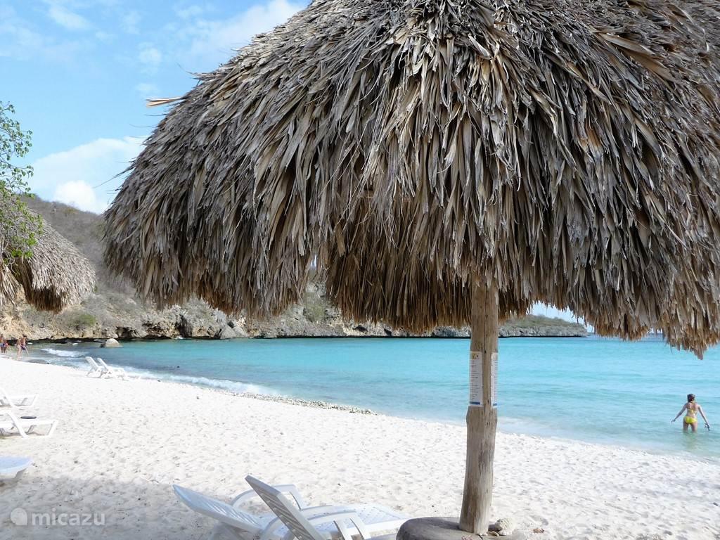 Overzicht van het strand van Cas Abao.