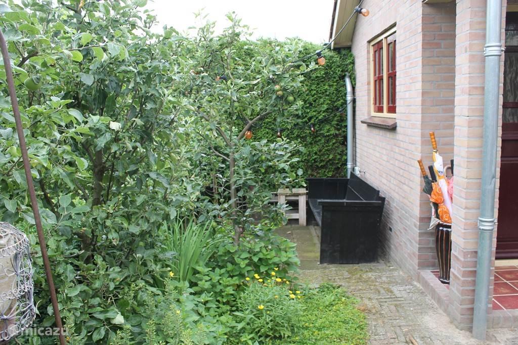 Nog een zitje in de tuin.