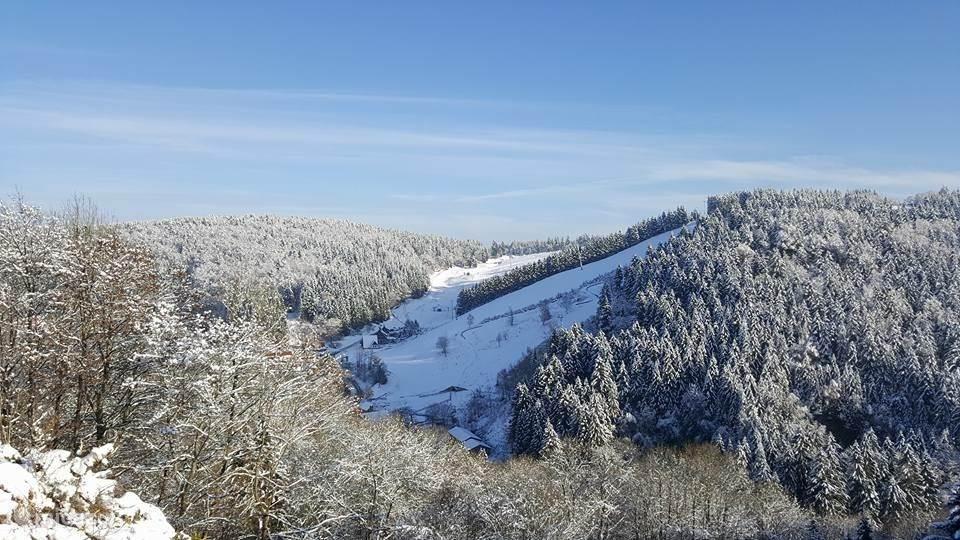sneeuw in de Harz