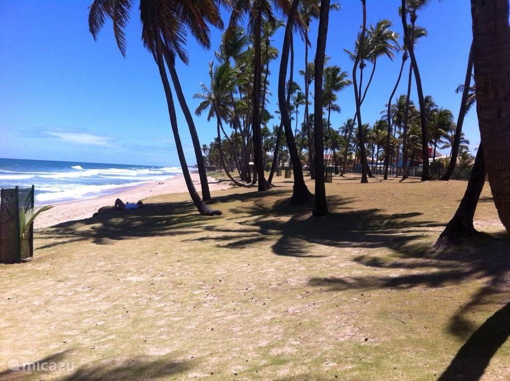 Op deze foto is het prachtige strand vanuit een andere positie te zien.
