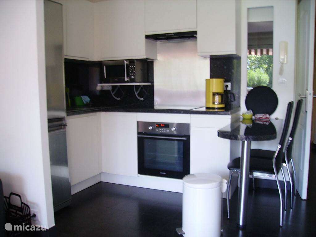 The modern fully equipped kitchen with breakfast bar