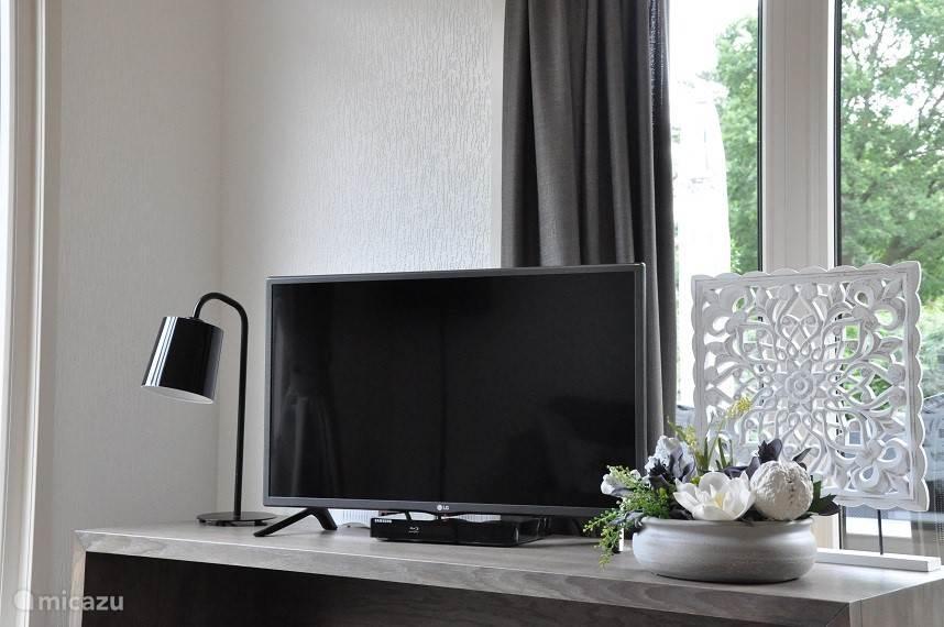 Met TV, Radio (via de TV), CD speler, DVD speler en/of Bleu-ray (3 in één module).