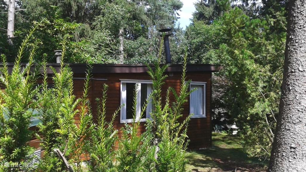 Vakantiehuis Nederland, Gelderland, Laag Soeren - bungalow Veluws Bosviooltje