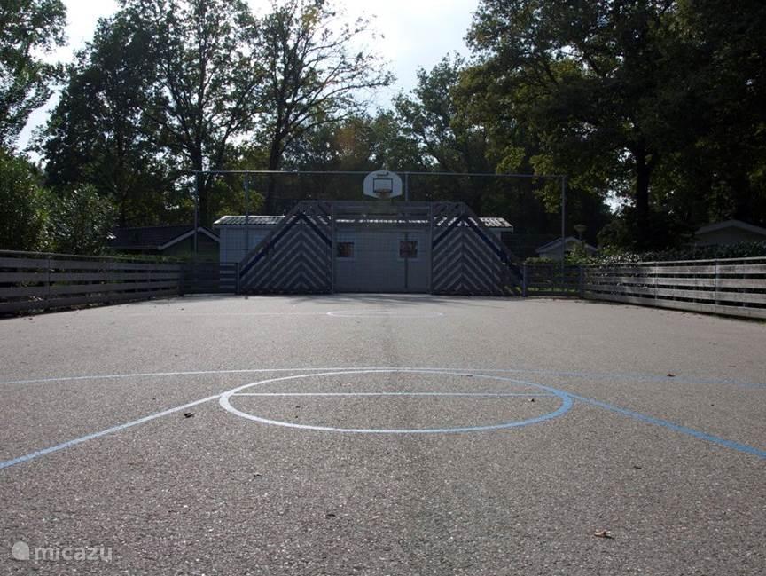 Multifunctioneel sportveld voor voetballen, handballen, basketballen, tennissen, badmintonnen en hockeyen.