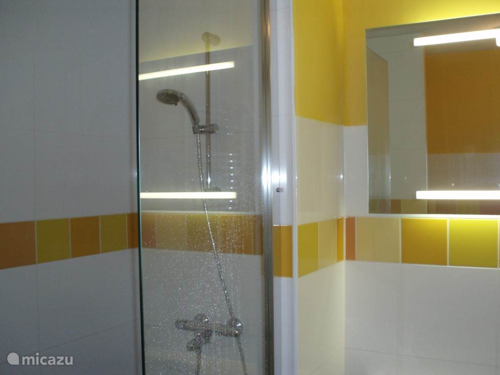 De 'gele' badkamer, met ruime inloopdouche, toilet en wastafelmeubel, en design radiator