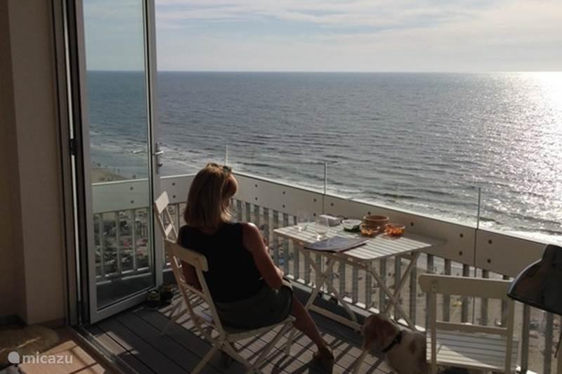 Vakantiehuis Nederland, Noord-Holland, Zandvoort Appartement Beach Suite Zandvoort