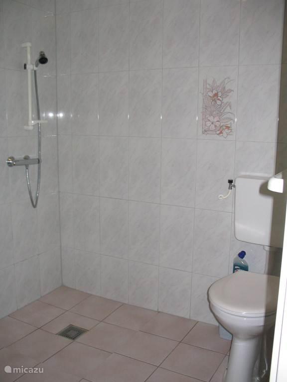 Badkamer met douche, toilet, wastafel.