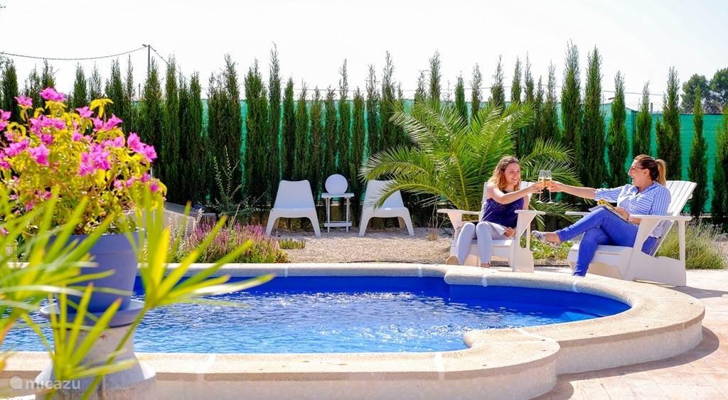 Heerlijk ontspannen aan het privé zoutwater zwembad in de zonnige tuin van Tia-Rosa B&B
