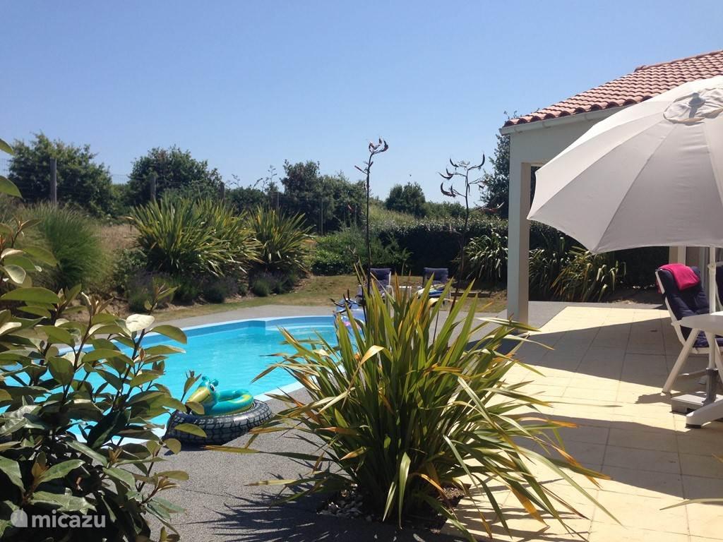 Beschutte tuin met zonnig terras en zwembad! Voor iedereen plezier! 's Morgens samen ontbijten in de ochtendzon en daarna heerlijk even zwemmen