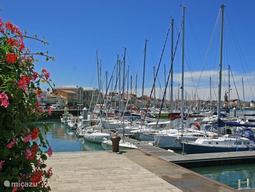 Gezellige haven met veel restaurants waar je heerlijk kan eten!