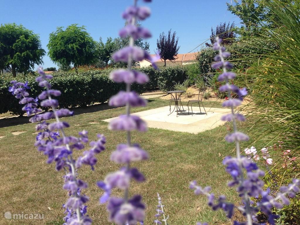 Grote tuin met 2e terras gelegen aan eigen jeu de boules baan