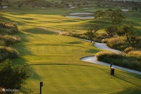 Golf terrein