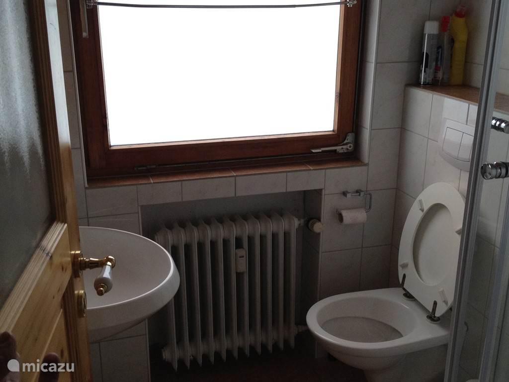 Badkamer met wastafel, inbouwtoilet en nieuwe douchecabine