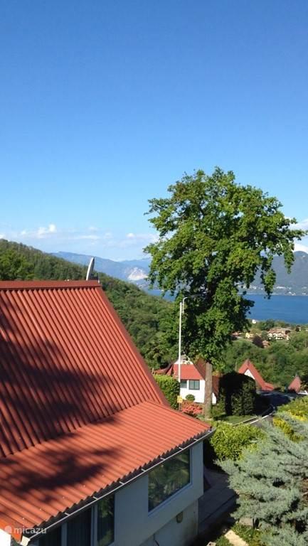 Foto vanaf de achterzijde van het huis.
