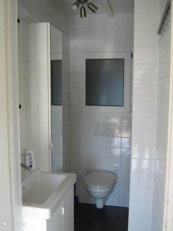 Badkamer, rechts van het inbouwtoilet bevindt de douche
