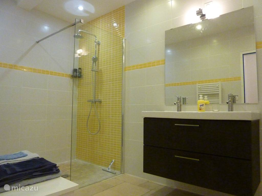 the downstairs bathroom. shower and double sink. The separate toilet is in the room next door.