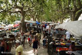 The market in Barjac.