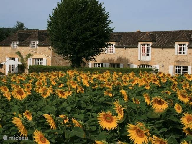 Vacation rental France, Dordogne, Saint-Vincent-de-Cosse holiday house Le Merle