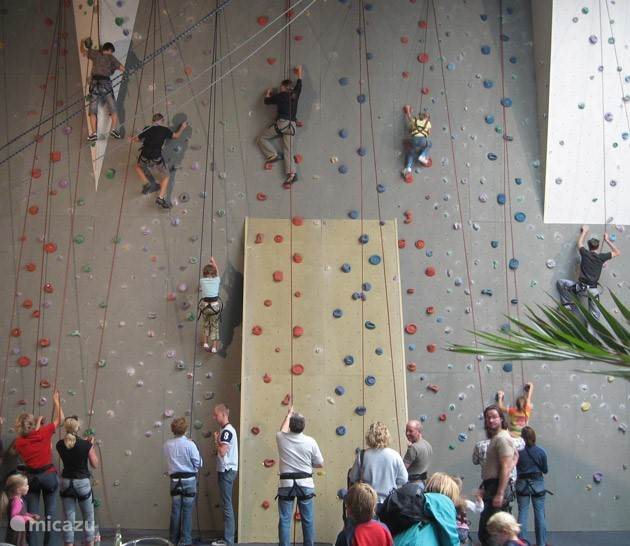 Indoor Archery or Wall Climbing