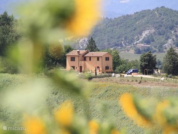 ons huis in de verte midden tussen de glooiende heuvels
