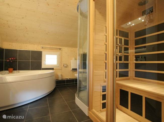 Bathroom with sauna, Jacuzzi and shower