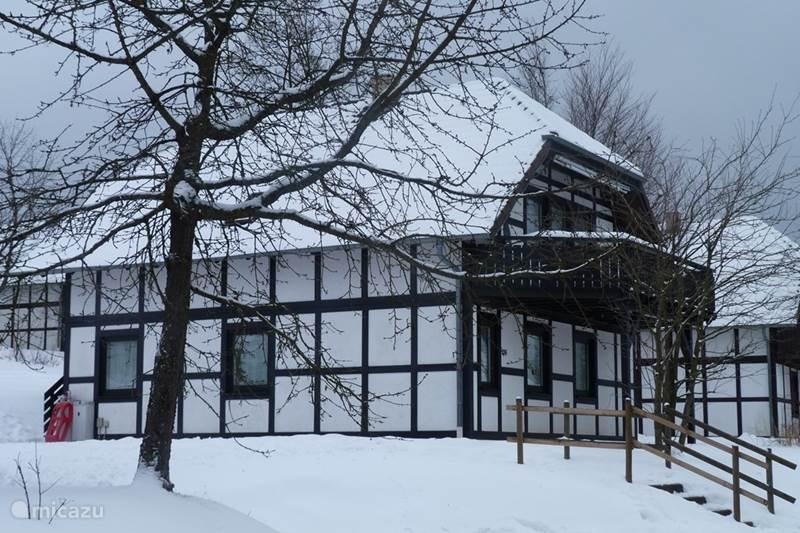 Vakantiehuis Duitsland, Sauerland, Frankenau Vakantiehuis House of Rootz 234 (Benedenwoning)