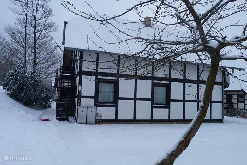 Ferienwohnung Deutschland, Sauerland, Frankenau Ferienhaus House of Rootz 234